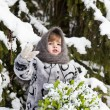 Little girl in a winter wood with the big basket — Stock Photo #37401303
