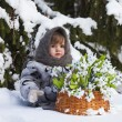 Little girl in a winter wood with the big basket of snowdrops — Stock Photo #37401321