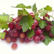 Red grape with leaves — Stockfoto