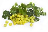 Groene druif met bladeren — Stockfoto