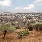 National park Zippori (Tsipori). Israel — Stock Photo #47762009