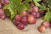 Ripe red grapes with leaves — Stock Photo