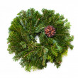 Traditional green christmas wreath — Stock Photo #17884679