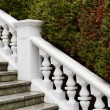 White plaster railings — Stock Photo #38363703