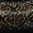 Mosaic Snake Skin_2 - Stockvektor