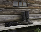 Black cat and tarpaulin boots — Stok fotoğraf