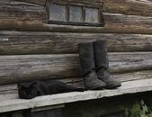Siyah kedi ve katranlı muşamba çizmeler — Stok fotoğraf