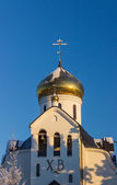 Domes of Prince Vladimir Cathedral. — Stock Photo