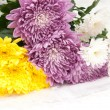 Bouquet of chrysanthemums — Stock Photo #12565765
