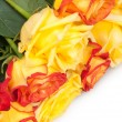 Bouquet of roses — Stock Photo #12565772
