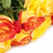 Bouquet of roses — Stock Photo #15332493