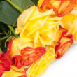 Bouquet of roses — Stock Photo #18969559