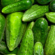 Cucumbers — Stock Photo #18969561
