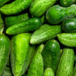 Cucumbers — Stock Photo #20672231