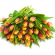 Tulips — Stock Photo #21302483