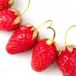 strawberries — Stock Photo #21686413