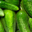 Cucumbers — Stock Photo