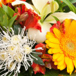Bouquet — Stock Photo #34177271