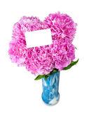 花瓶に牡丹 — ストック写真