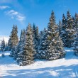 Winter landscape — Stockfoto #35040815