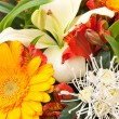 Bouquet — Stock Photo #35999033
