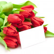 Bouquet of red tulips — Stock Photo #4742573