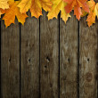 Leaves on wooden background - Photo
