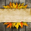 Leaves and old paper on wooden background — Stock Photo