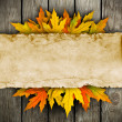 Leaves and old paper on wooden background - Photo
