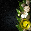 Oil and orchid with green leaf — Stock Photo