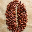 Fresh roasted coffee beans — Stock Photo #15553271