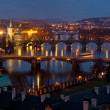 Charles Bridge in the Prague — Stock Photo #15558295
