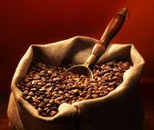 Kaffebönor på säckväv säck — Stockfoto
