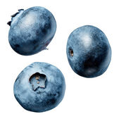 Blueberry on white background — Stock Photo