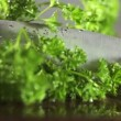 Fresh organic parsley with knife — Stock Video