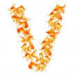 Gold fish alphabet letter — Stock Photo #29154107