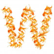 Gold fish alphabet letter — Stock Photo