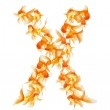 Gold fish alphabet letter — Stock Photo #29154115