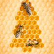Christmas tree frome honey cells with bees — Stok Fotoğraf #35582785