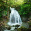 Forest waterfall — Stock Photo #40725395