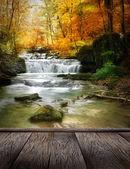 Cachoeira da floresta — Fotografia Stock