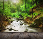 Wooden jetty over forest waterfall — Stock Photo
