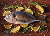 Raw dorado fish with rosemary and sea salt — Stock Photo