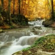 Forest waterfall — Stock Photo #48193261