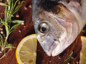 Raw dorado fish — Stock Photo