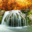 Forest waterfall — Stock Photo #48359751