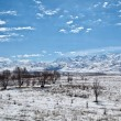 Panoramic landscape of snowy mountains in the spring — Stock Photo #23046882