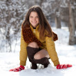 Portrait of a beautiful girl in the winter. Winter girl. — Stock Photo #23106556