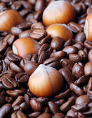 Coffee beans and nuts — Stock Photo