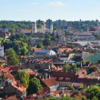 Vilnius, Lithuania: top view Vilnius panorama — Stock Photo